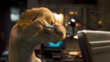 Kissat ja koirat: Katti Katalan kosto
