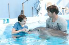 Delfiinitarina